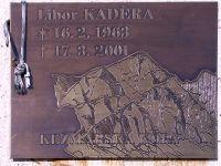 2008-12-29-099